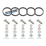Swirl Flap Removal Kit for Mercedes with 2.7 CDI OM647 OM612 engines + Victor Reinz Gaskets