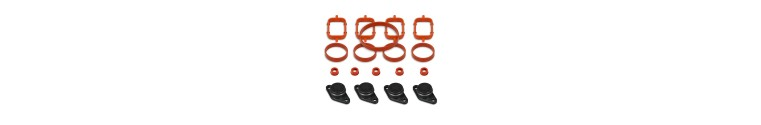 BMW Swirl Flap Removal Sets with gaskets